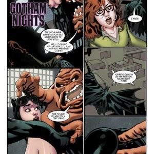 Porn Comics - Gotham Nights Cartoon Porn Comic